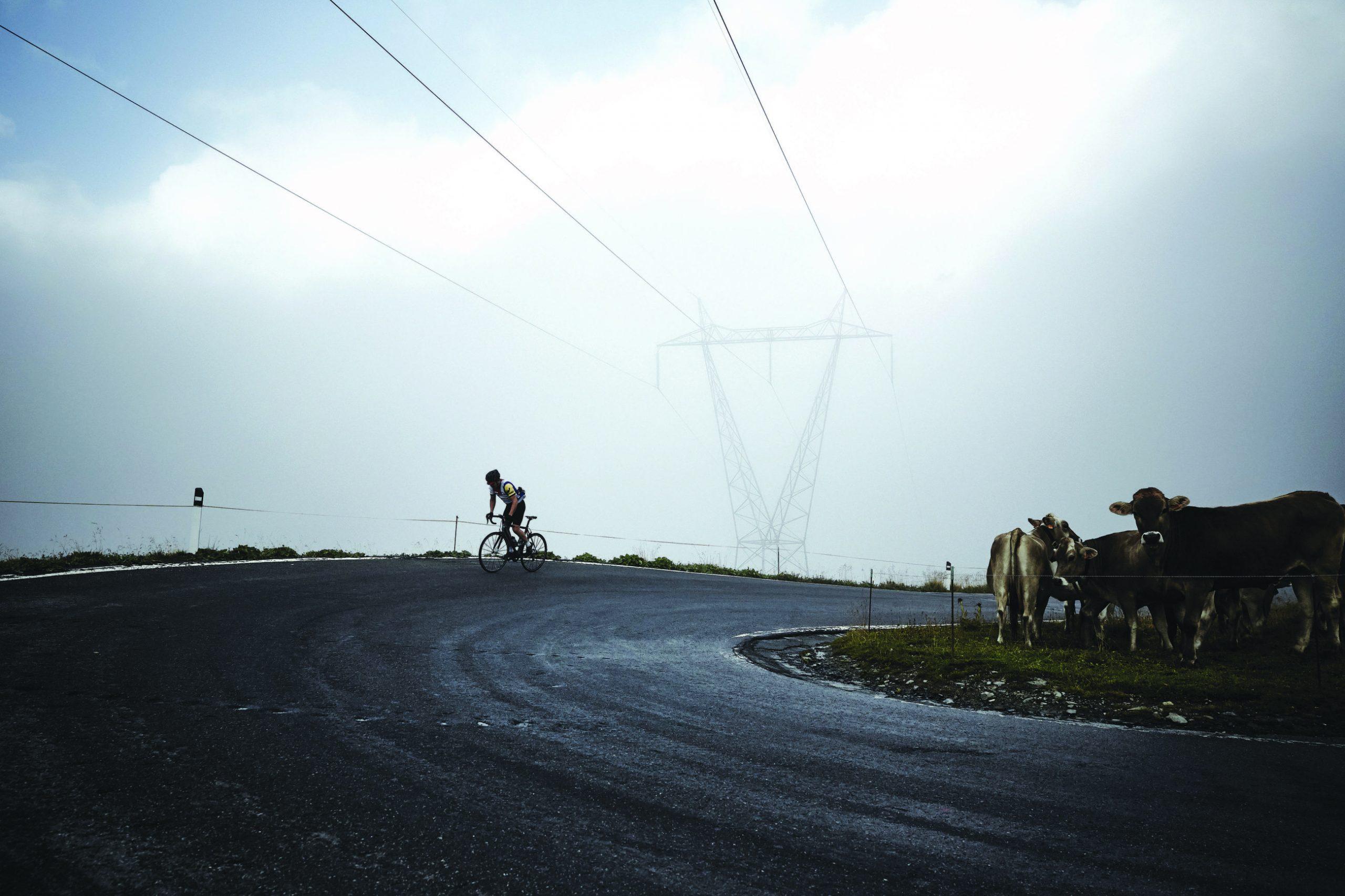Stelvio: Giro d'Italias hellige fjell